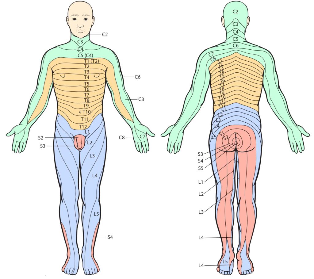 veel jeuk lichaam