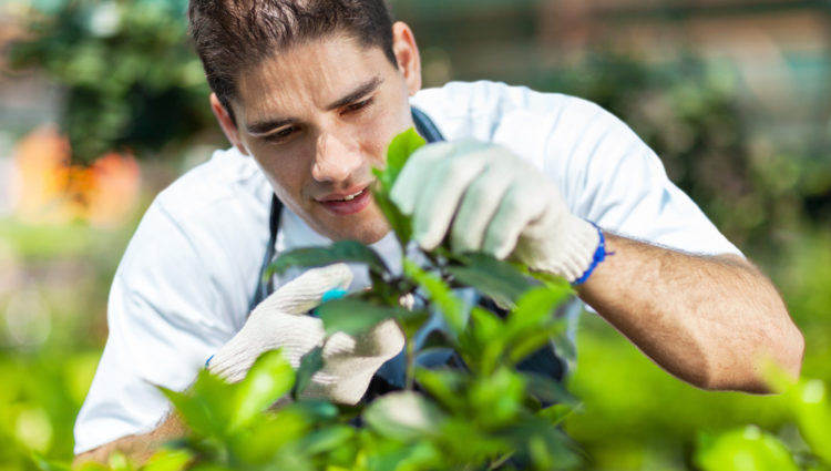 Wat weten buitenwerkers over de risico's op huidkanker?